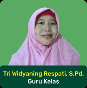 Web SD Muhamadiyah Bodon guru18